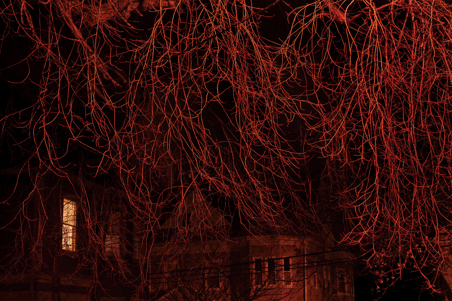18-Red Branches